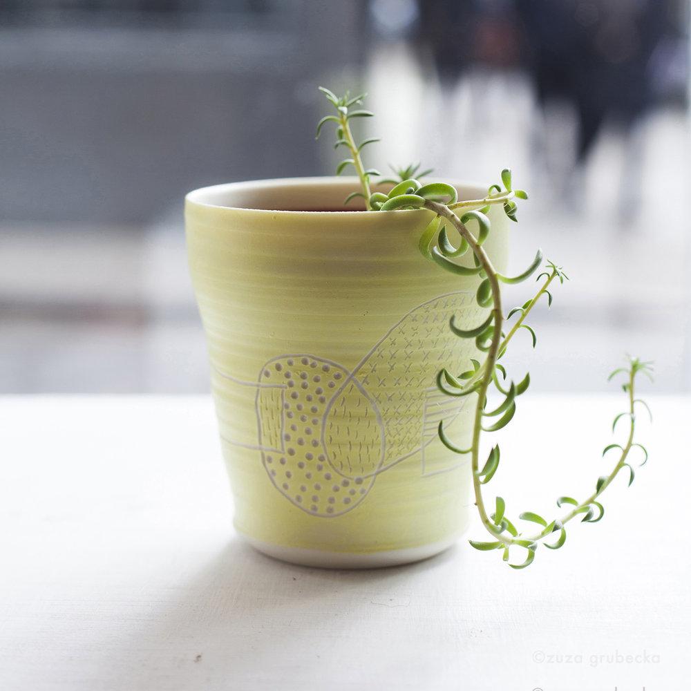 Small Succulent £3 Pot: Josefina Isaza £30