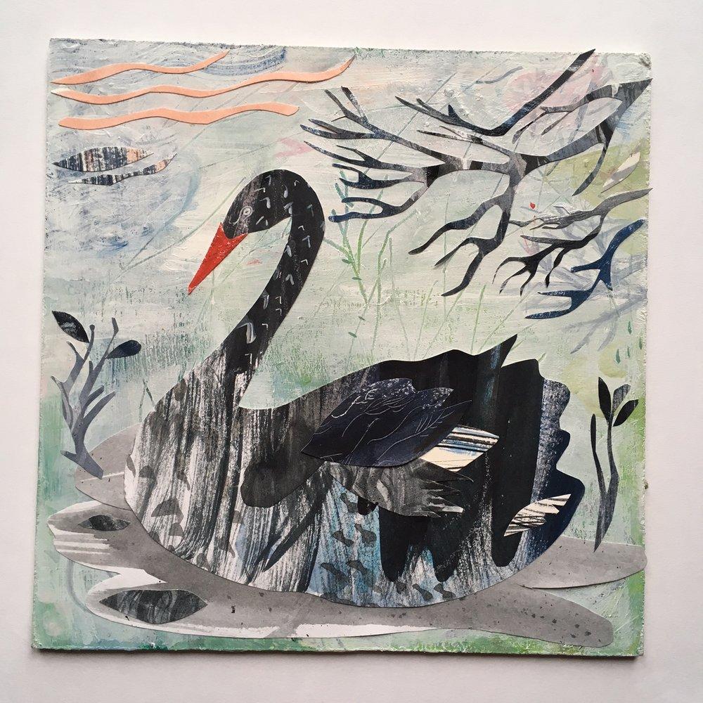 Black Swan  mixed media  32 x 32cm  £180 framed
