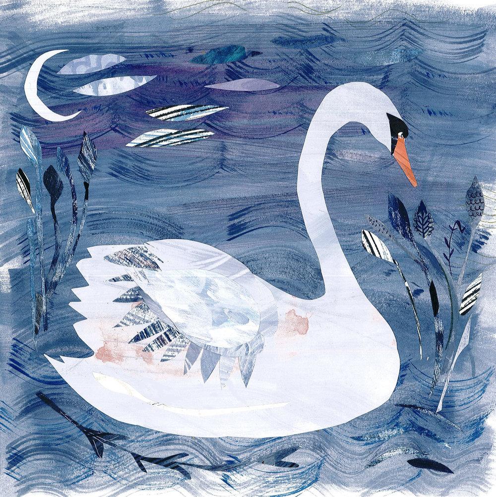 White swan  mixed media  36 x 36cm  £180 framed