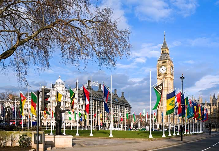 Image result for commonwealth flags london