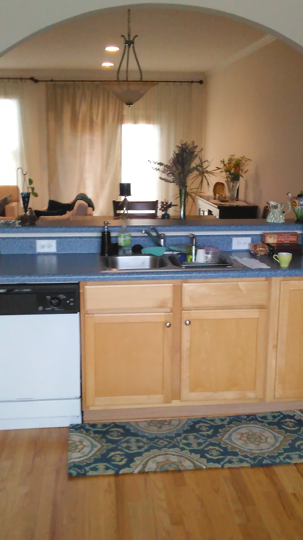 Copperline Drive, 527 - Kitchen looking into the LR.jpg