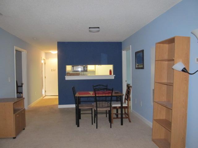 Smith Level Road - 303-E22 - Living Room II.JPG