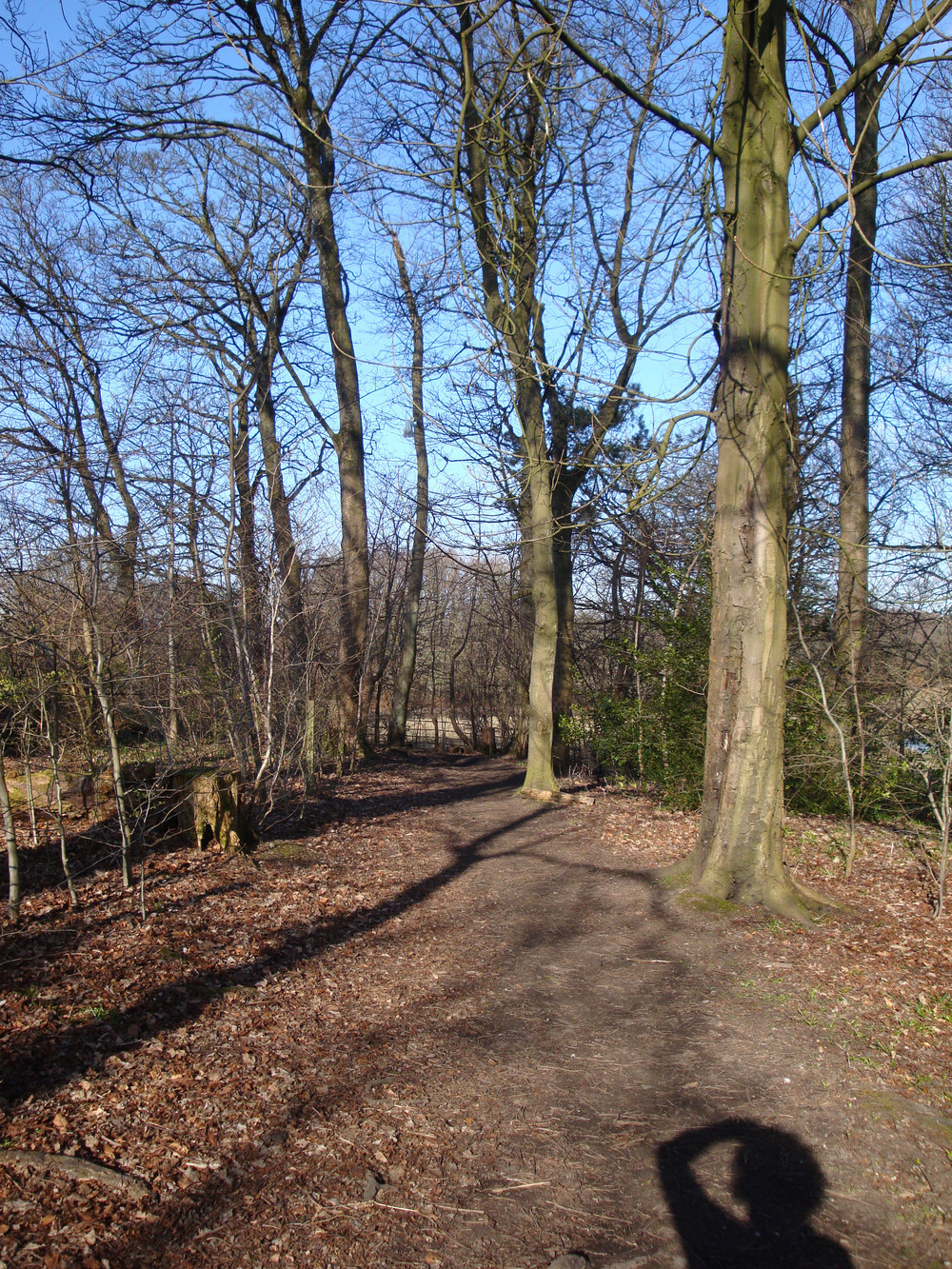 Pollok-park-trail-small.jpg