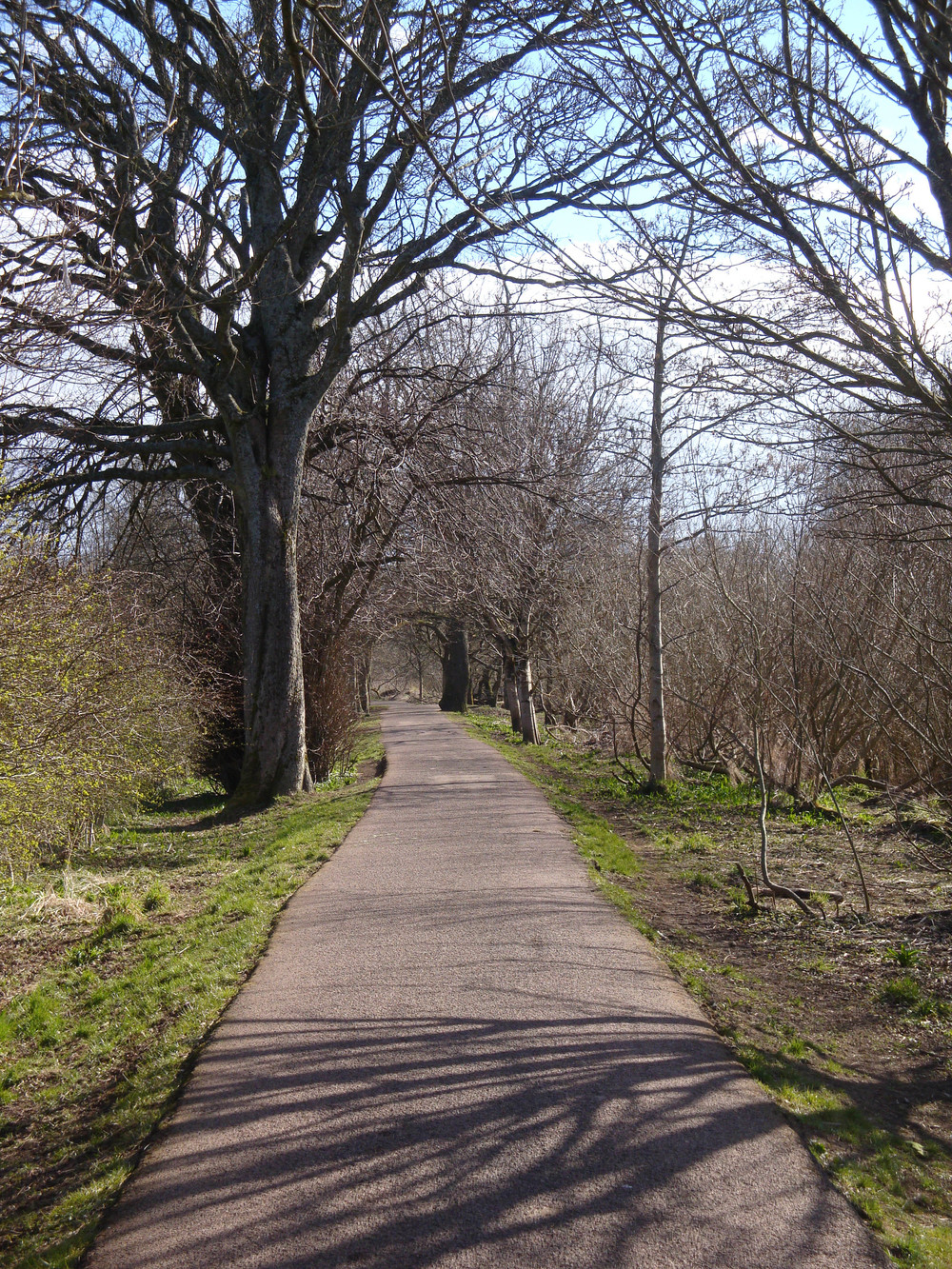 Pollok-river-path-small.jpg