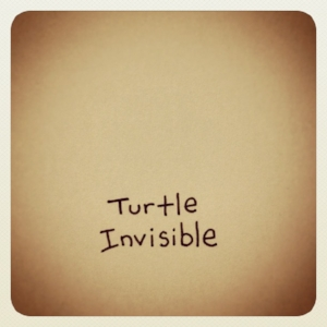 invisible turtle.jpg