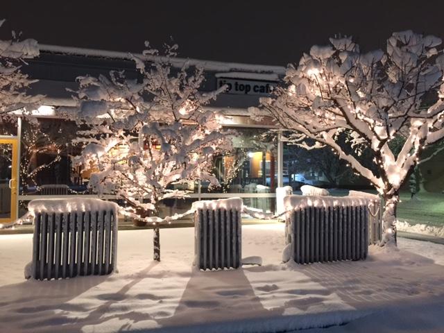 1st snow Nov 2014.JPG