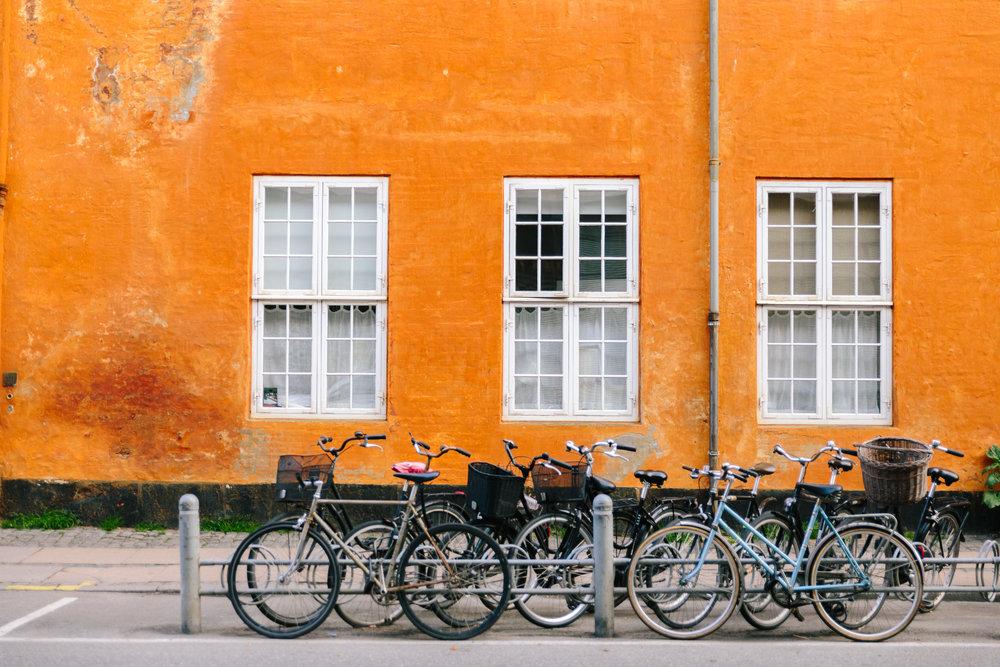 Copenhagen-Ant Tran-20160514-7922.jpg