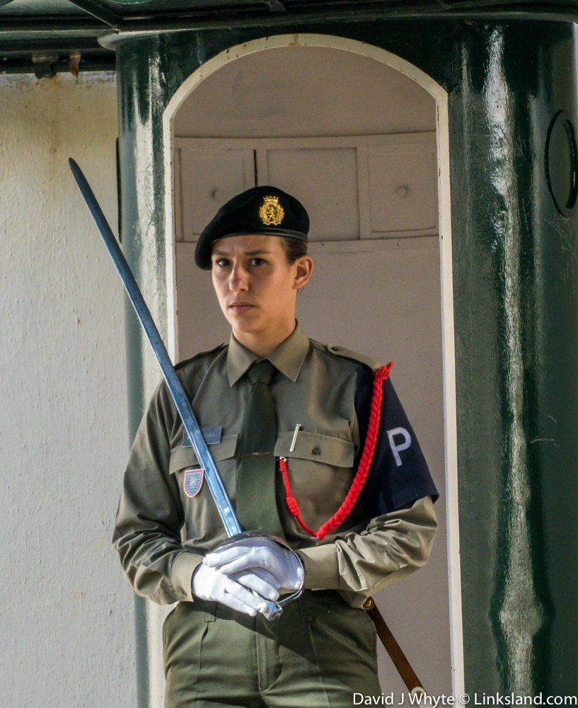 São Lourenço Palace Guard