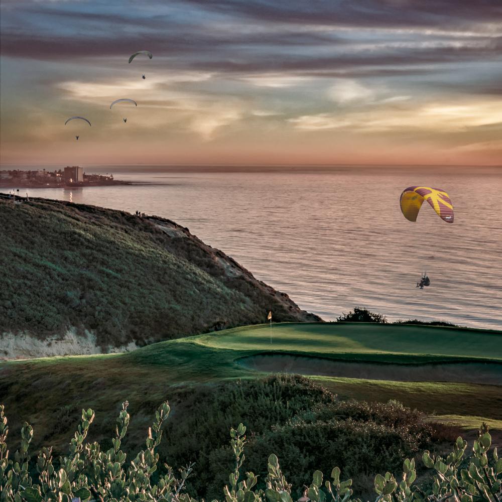 Torrey Pines, San Diego, California, USA-5.jpg