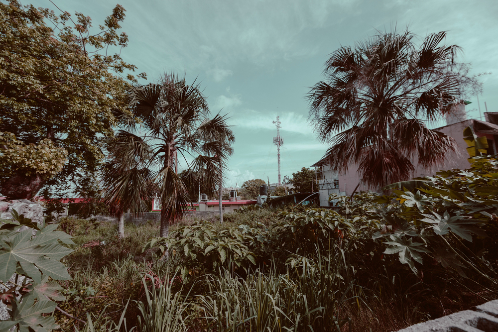 jonathanburkhart,oklahomacity,photography,cozumel,mexico,streetphotography,4.jpg