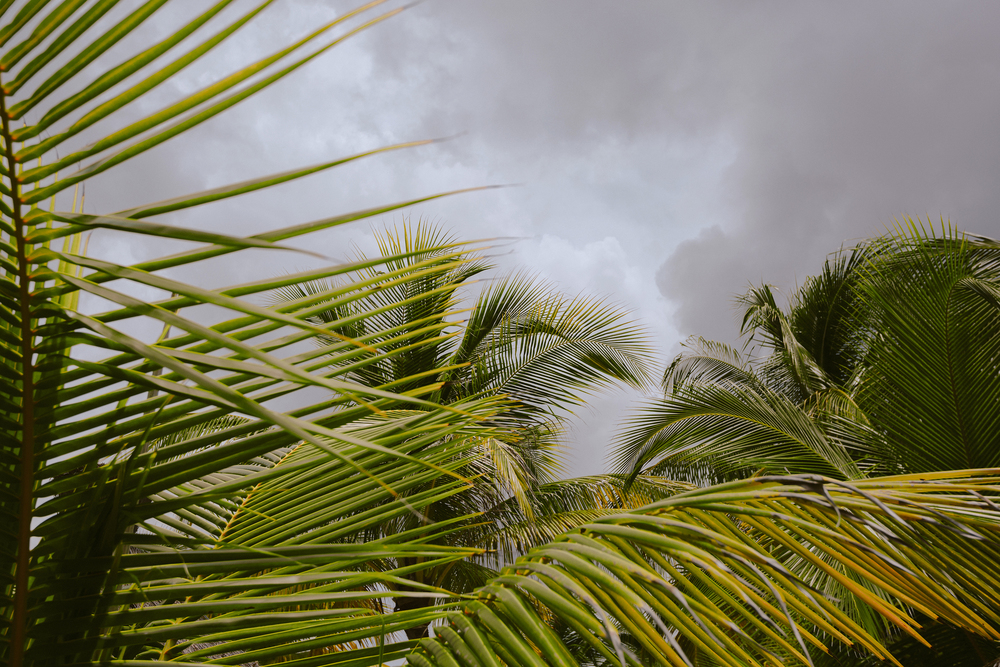 jonathanburkhart,oklahomacity,photography,cozumel,mexico,streetphotography,22.jpg