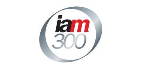 IAM 300 Image smaller.jpg