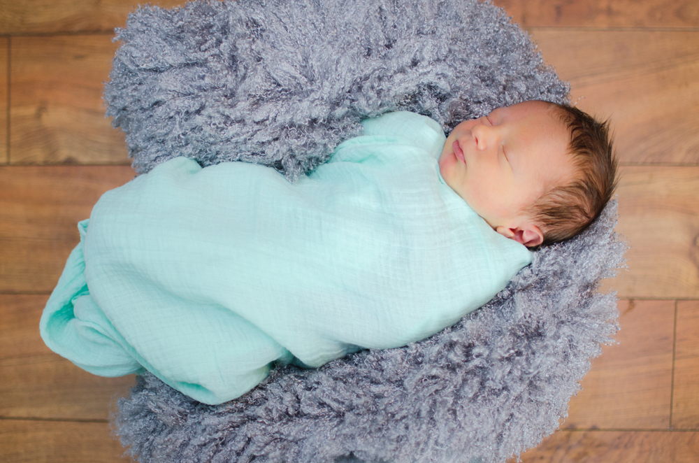 Baby Zander-128.jpg
