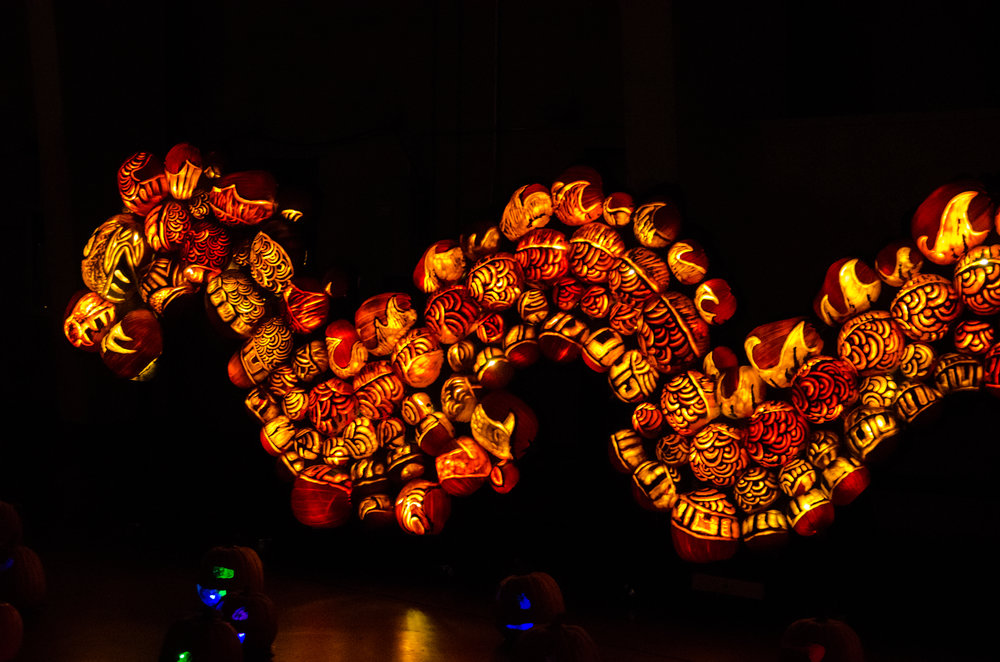Rise of the J-o-Lanterns-56.jpg