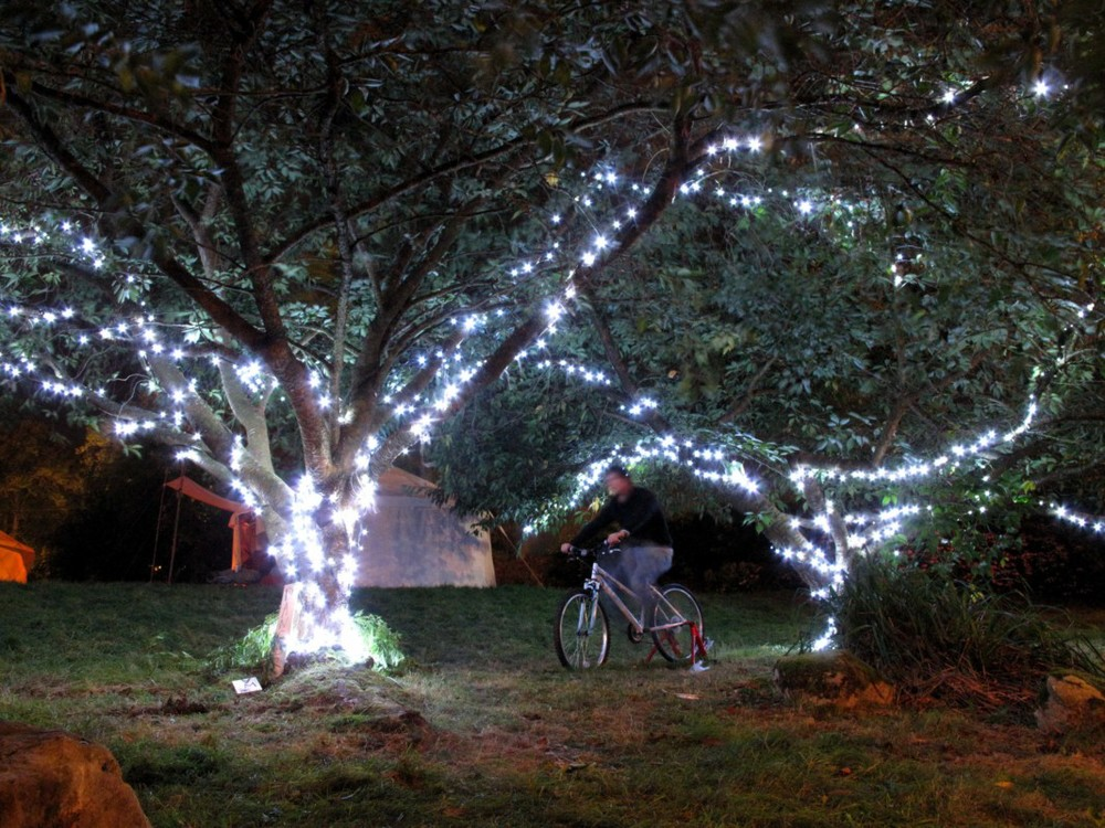 1 bicycle powering LED 'tree branches', Greenman Festival