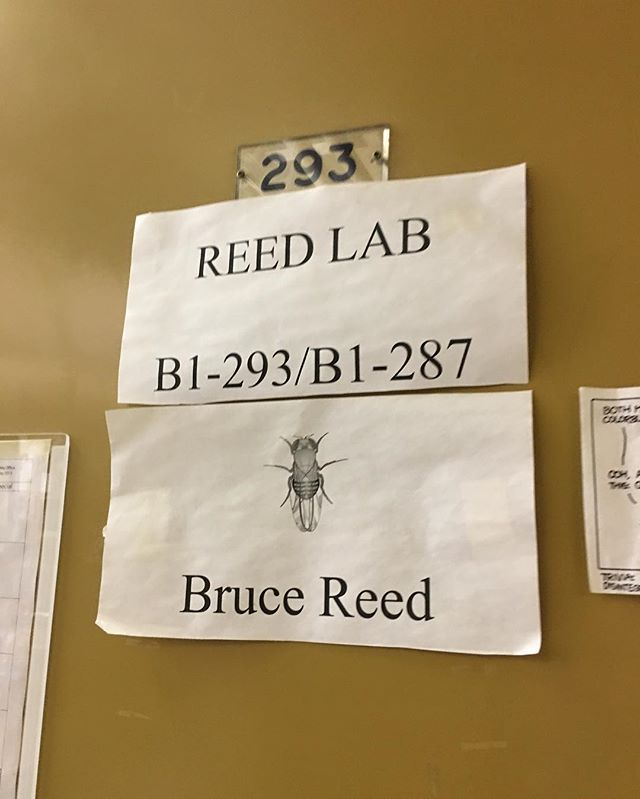 Reed lab @uofwaterloo