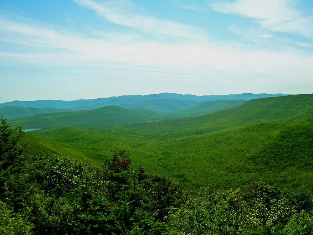 Central_Catskills_from_Twin_south_summit.jpg