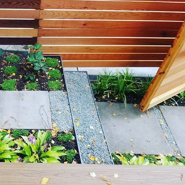 Tidy details on this townhome backyard we recently completed. We do small spaces! Construction by @sageandstone_builders  #gardendesign #garden #residentialgardendesign #landscapearchitect #landscape #landscapearchitecture #plantgeek #plantlust #plantnerd
