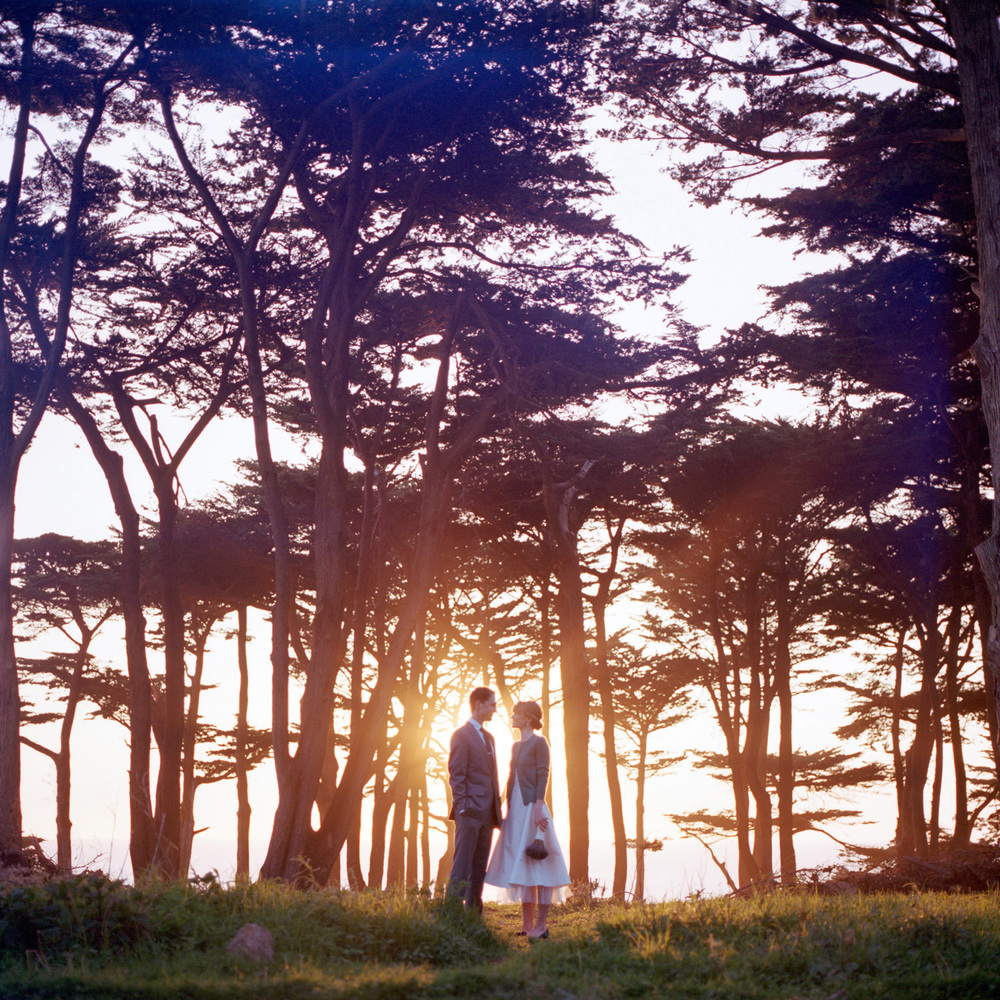 bride and groom at sunset in the cypress trees at Lands End in San Francisco wedding