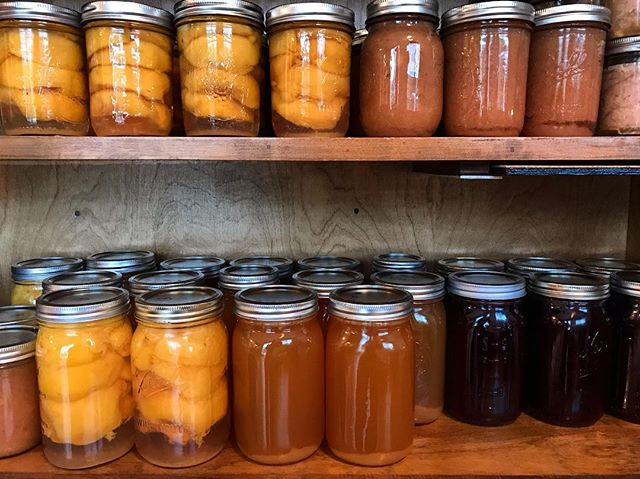 We've been busy canning up a storm! So far: canned and froze 51 lbs of tuna, 23 pints of peaches, 19 pints of jam made, 12 pints of apple sauce, 8 quarts of grape juice, 20 lbs blueberries frozen, 9 quarts of apple juice canned, 1 gallon hard cider fermented, and 3.5 gallons of fresh cider frozen. So far. Thanks to my mom for all the fruit :)