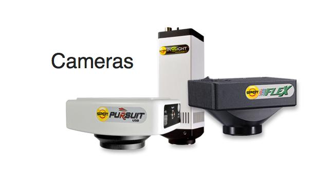 spot cameras.jpg
