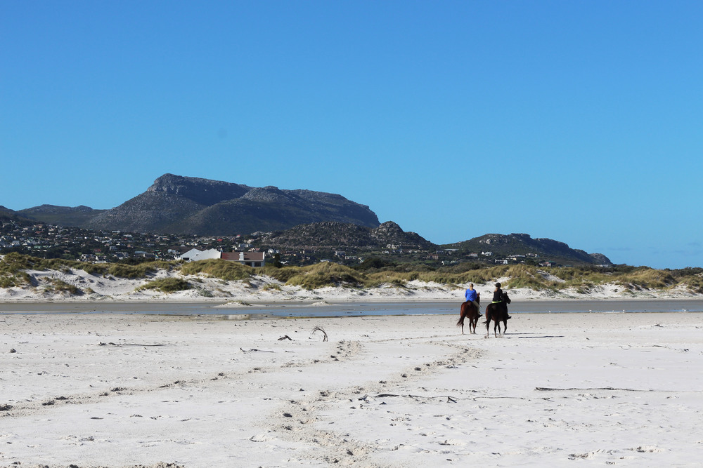 Lindsey and I riding along the beach with the fynbos directly ahead of us.