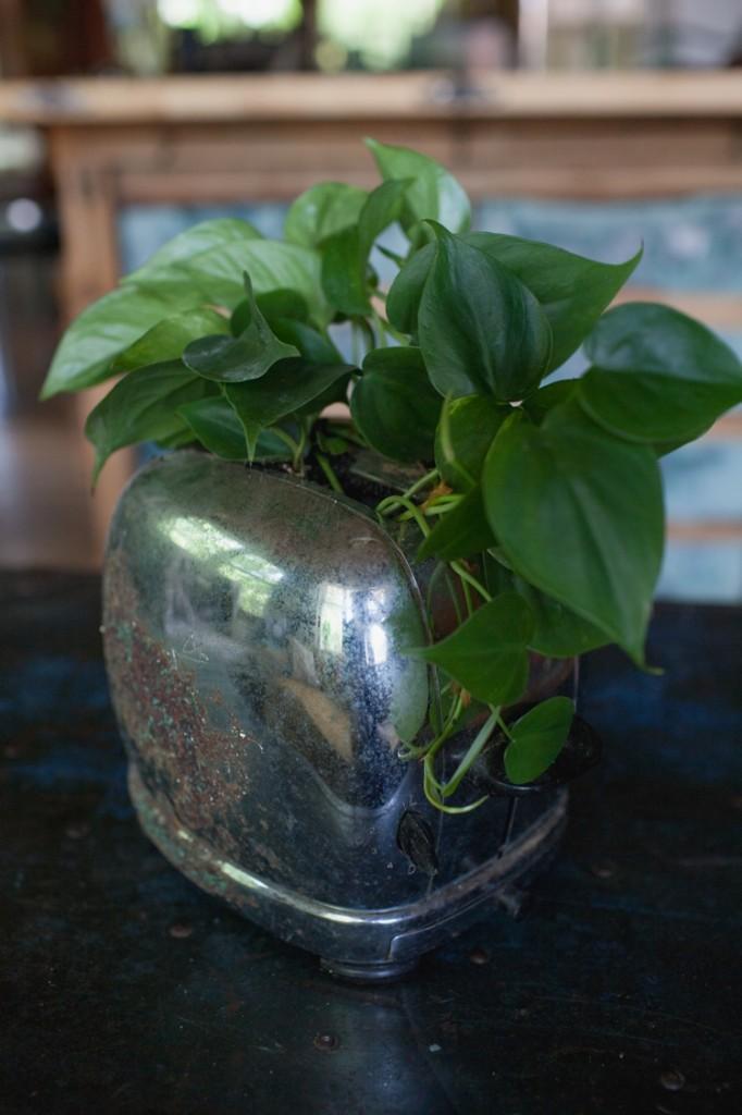 planter_002.jpg