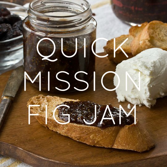 Quick Mission Fig Jam