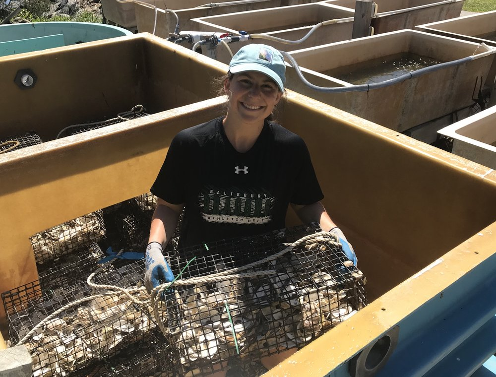 Brianna Group completed a year-long internship with Growing Solutions during her 2017 senior year at UCSB. Upon graduation and a thorough job search she landed her dream job in New Hampshire (home turf) as the  Oyster Conservation coordinator for The Nature Conservancy .