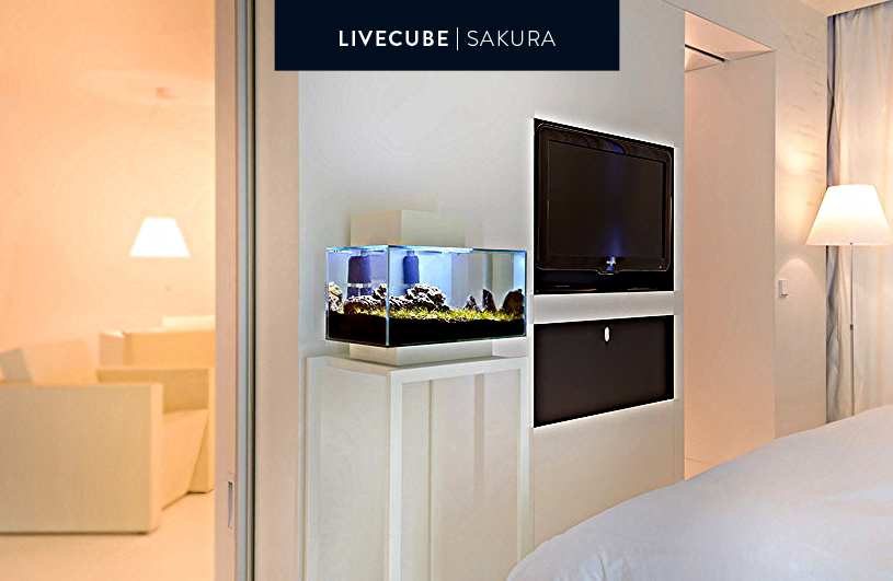 Livecube Sakura weiß auf weißem Untergestell 95cm
