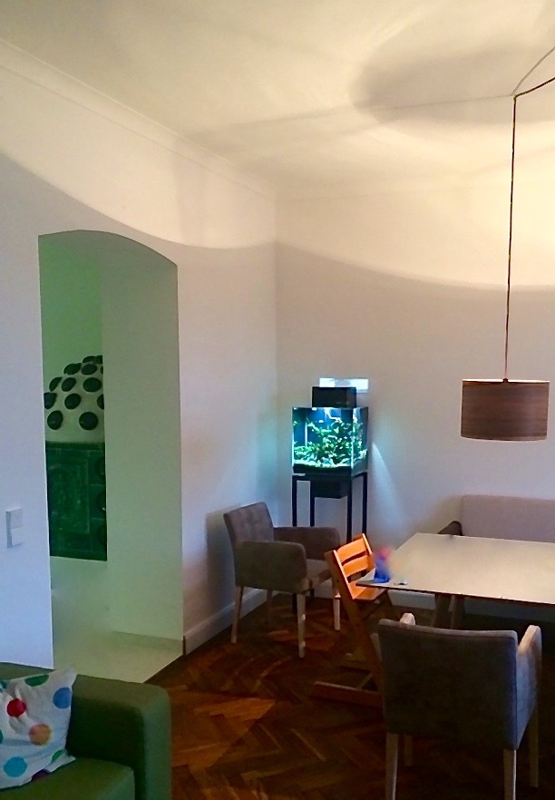 Livecube Aquarium Wohnung
