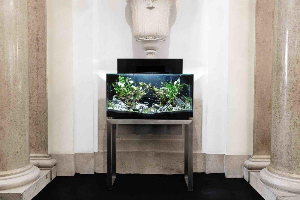 Livecube Sakana 160 Liter; Untergestell Edelstahl poliert 95 cm Höhe