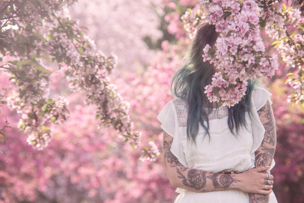 201605_fleurs_3711.jpg