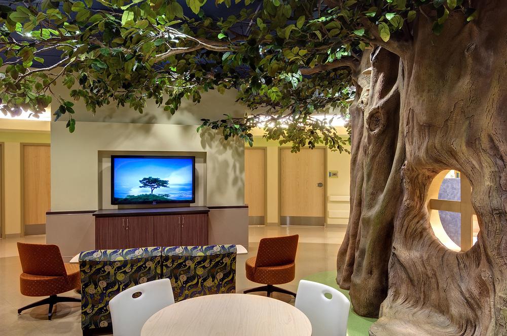 tmc-pediatric-hospital-walnut-tree