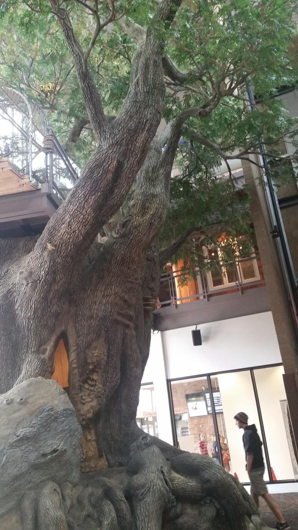 3 story tree
