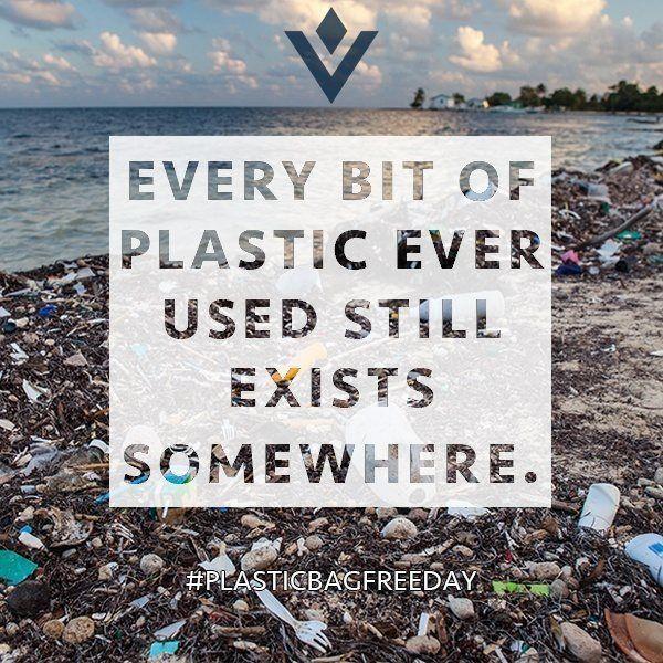 24501568441fe45cfdb7a3f6bea38f25--plastic-waste-plastic-bags.jpg