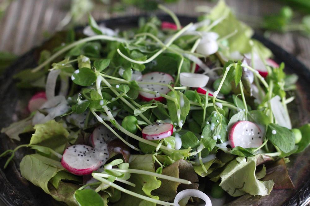 Spring Pea Salad by Francesca Alfano
