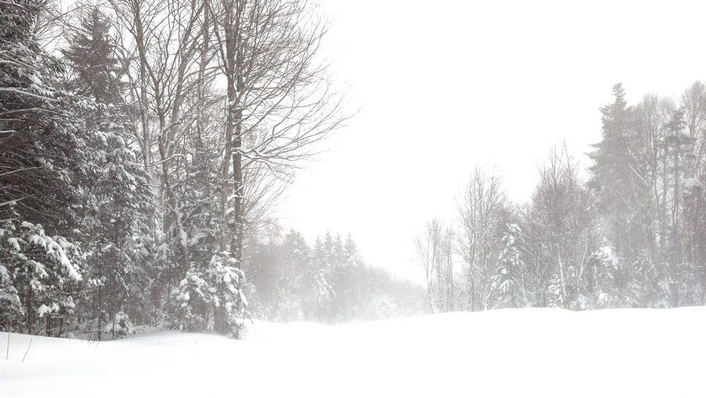 "March 13th at Brettonwoods.  20"" of fresh powder and loved it.  Took this photo while I was stuck in the powder."