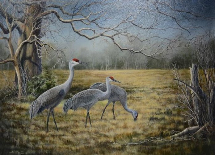 Sherry Hogan  Dingle Ranch, Lesser Sandhill Cranes  Acrylic on Panel  18X24  SOLD