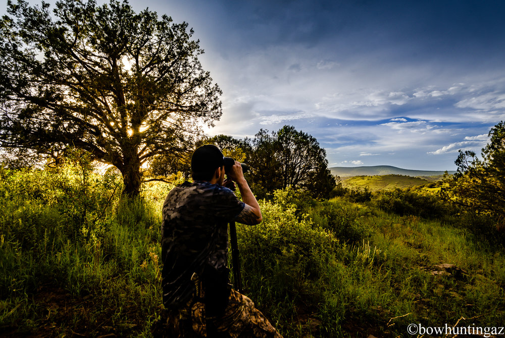 Glassing the hillside using my Swaro 15x56's, rented from Open Country Optics. Click  HERE  to check them out!