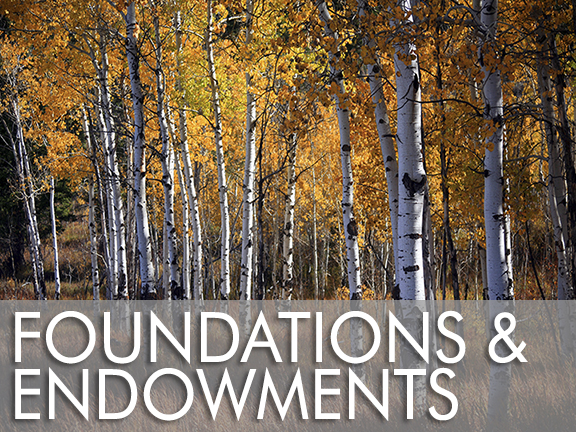 Foundations & Endowments