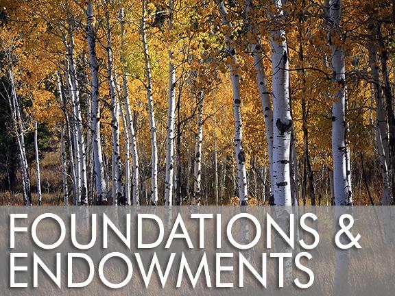 Foundations & Endowments