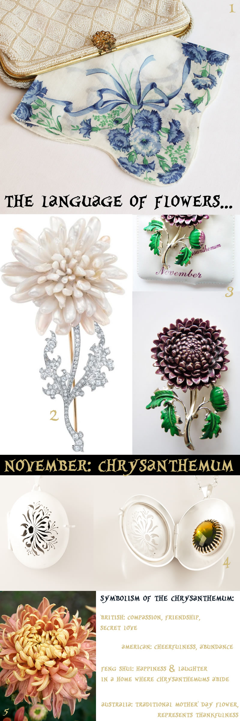 november birthflower chrysanthemum