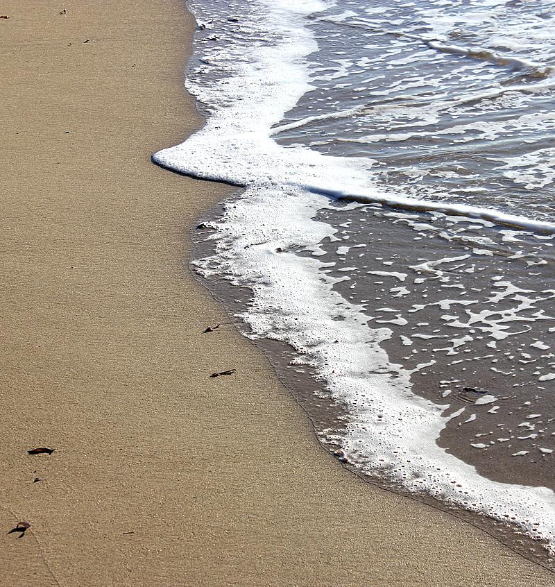 pt leo lapping waves.jpg