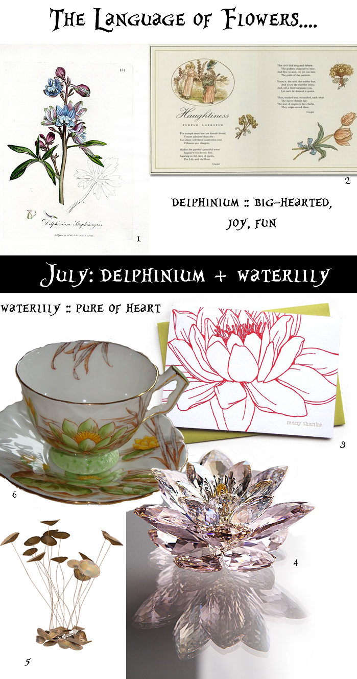 water lily delphinium language of flowers birthflower for july