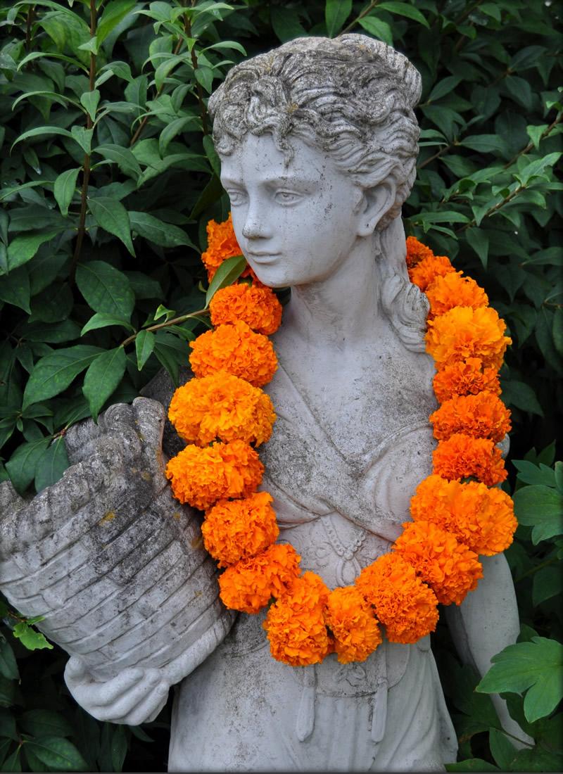 Wedding Flowers marigold garlands