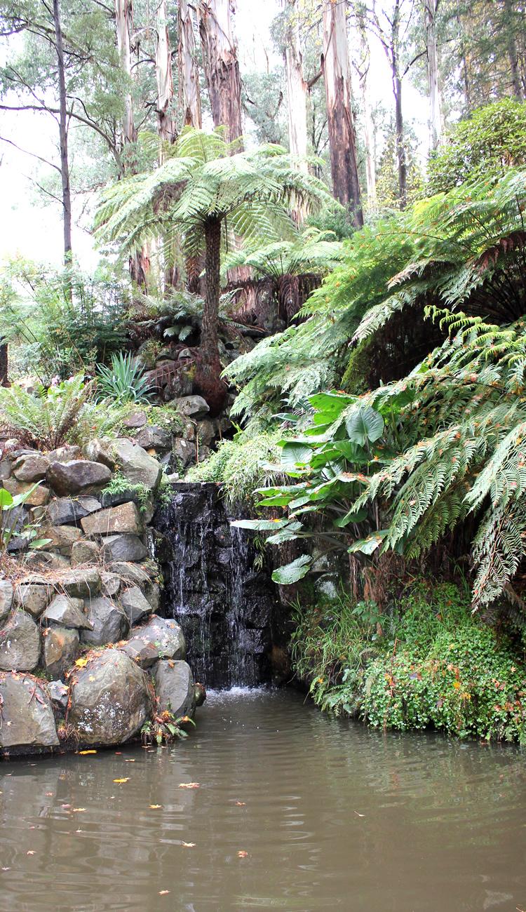 burnham beeches waterfall