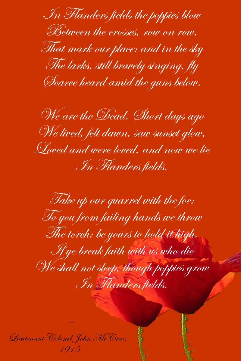 in flanders fields poppy poem