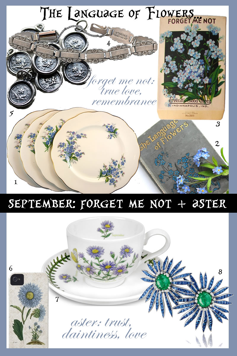 LANGUAGE OF FLOWERS september BIRTHFLOWER forget me not aster