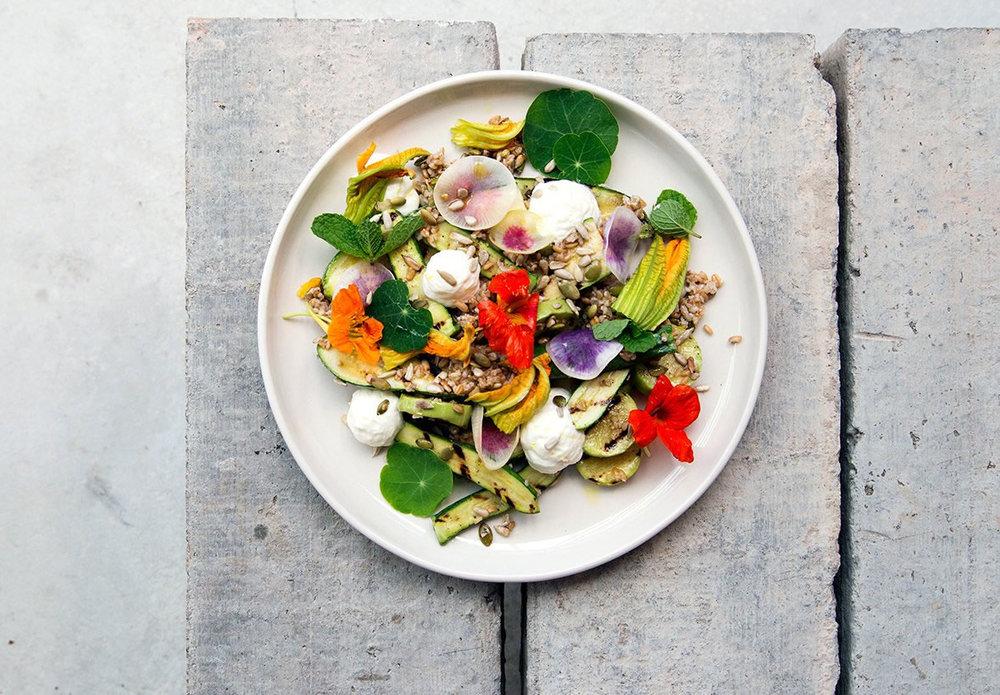 14.7.Sean-Zucchini-Dish-3.jpg